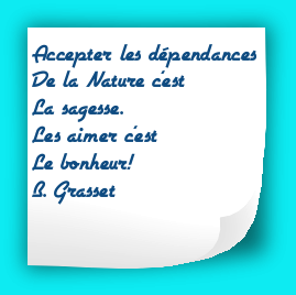 citation du mois