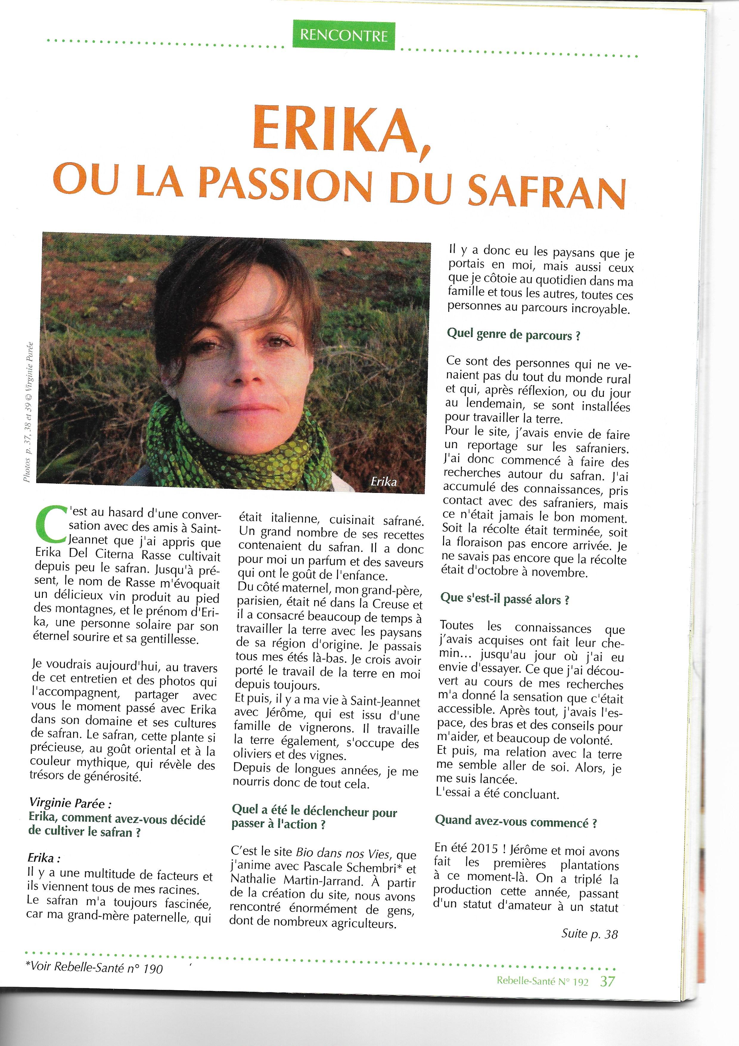 Safran 1 1